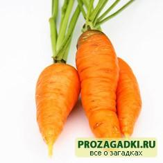 секрет морковного сока