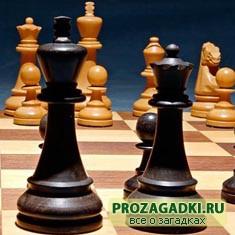 Спор в шахматах