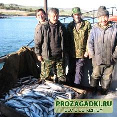 Про рыбаков и рыбу