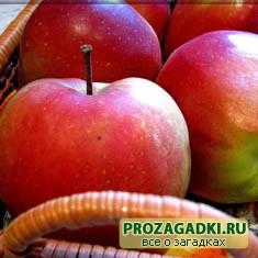 Про яблоки
