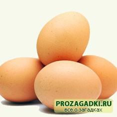 Про яйцо