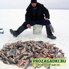 Про рыбалку
