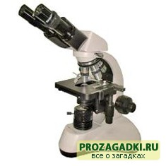 Когда изобрели микроскоп?