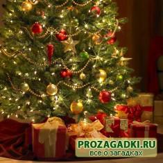 Что подарить на Новый год 2012?