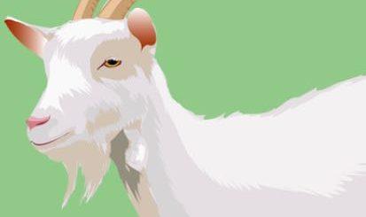 загадка про козу